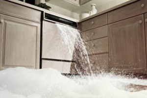 home in coral gables with water damage